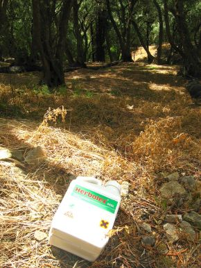 Empty_Glyphosate_(Herbolex)_container_discarded_in_Corfu_olive_grove